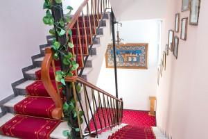 stair-case-annapolis-239
